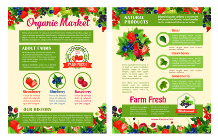 Fruit and berry organic food market poster templates. Strawberry, blueberry, raspberry, black and red currant, gooseberry, briar fruit branch with leaf and text layout with fresh farm berry badges
