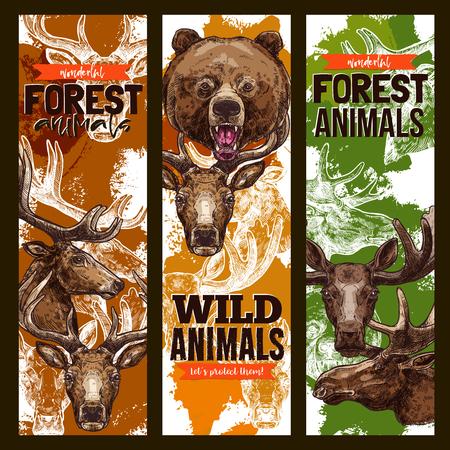 동물 스케치 배너 포리스트 야생 동물의 집합입니다. 야생 곰, 사슴, 엘크, 순록 및 사슴 동물 스케치 포스터, 육식 동물 포유 동물과 동물원 동물원 전 일러스트