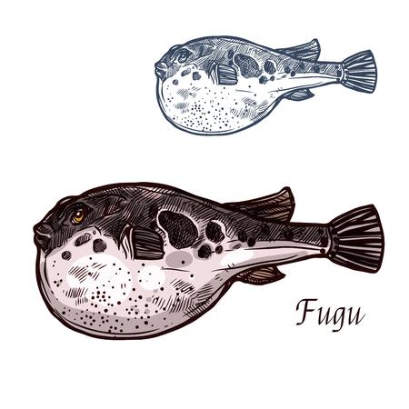 ふぐ魚は日本のふぐのスケッチを孤立させる。海の動物、魚の市場とレストランのメニューデザインのための膨出した胃ベクトルアイコンを持つ有