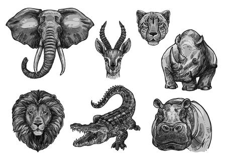 Animaux sauvages africains esquisser des icônes. Vecteur isolé ensemble de défense d'éléphant, antilope ou gazelle et guépard panthère, lion de savane ou tigre et crocodile d'alligator avec hippopotame ou rhinocéros pour le zoo.