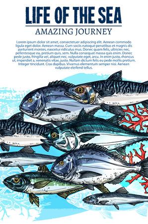바다 물고기 스케치의 벡터 포스터 바다 물고기 생명