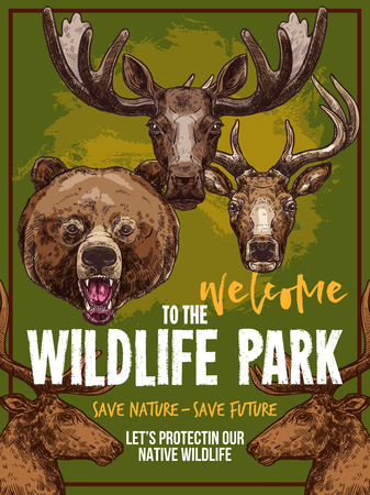 Wild animals vector zoo sketch wildlife poster