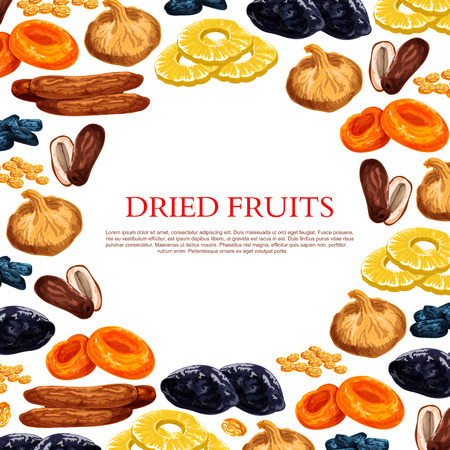 말린 과일과 마른 과일 스낵의 벡터 포스터 일러스트