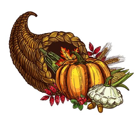 Thanksgiving Day Füllhorn und Herbst Ernte Skizze. Vector lokalisiertes Symbol des saisonalen Gemüse-, Frucht- und Beerenlebensmittels, des Ahorns oder des Eichenblattes für traditionelle Erntedankfestgrußkartenschablone Standard-Bild - 87063522