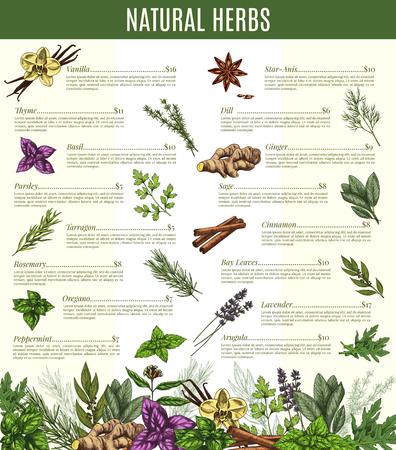 Vector menu of spices and herbs seasonings sketch