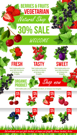 Vector poster of fresh garden berries market sale Çizim