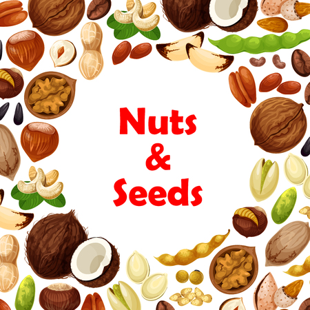 Vector poster of nuts and fruit seeds Banco de Imagens - 87339467
