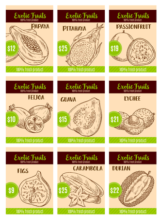 Vector price card sketch of tropical exotic fruits Illustration