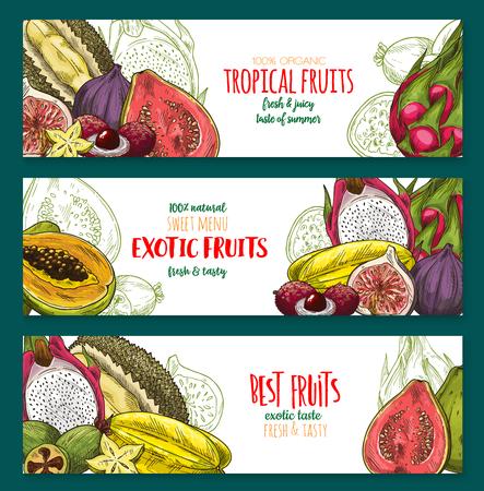 Exotische fruitschets banner set van tropische bessen Stock Illustratie