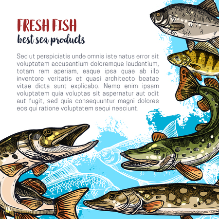 Fish animal sketch poster template design