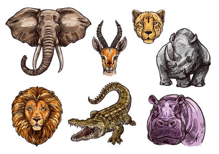 코끼리, 사자, 하마의 아프리카 동물 스케치 세트 일러스트