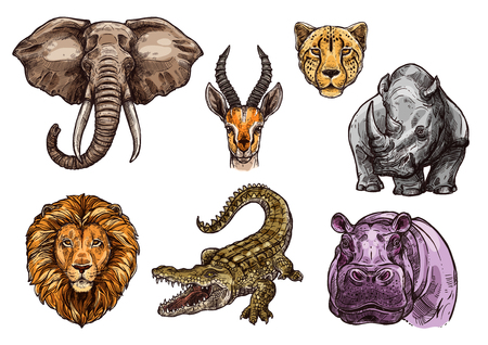 African animal sketch set of elephant, lion, hippo
