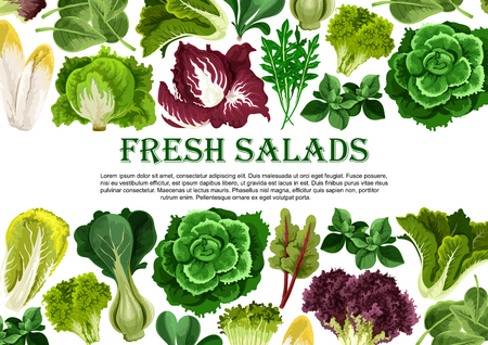 サラダの葉野菜の緑バナー枠デザイン
