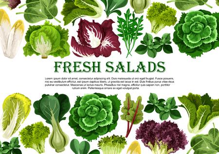샐러드 잎, 채소 채소 배너 테두리 디자인