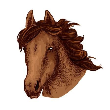 Tête de cheval ou moustache animale brun sauvage museau croquis icônes pour la mascotte de l'équipe de sport. Vector isolé jument ou étalon avec crinière agitant pour concours équestre ou courses de chevaux et exposition Banque d'images - 88337470