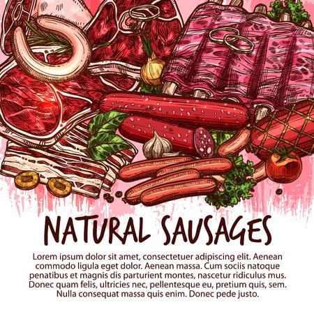 고기 조제 식품, 소시지 및 신선한 육류 제품 포스터. 벡터 스케치 cervelat, 페퍼로니 또는 간 소시지, 농장 돼지 고기 필렛 또는 쇠고기 스테이크 및 도 일러스트