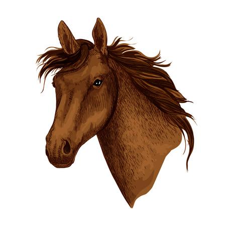 Caballo o cabeza de mustang marrón con melena ondulada. Bozal de equino salvaje o trotón de caballo de carreras para mascota o semental del equipo deportivo para competiciones ecuestres o carreras y exposiciones de caballos. Icono aislado de Vector Foto de archivo - 88337949