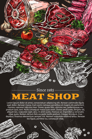 Meat shop delicatessen poster of butchery store. Vector sketch design of farm butcher meat and sausage, ham or bacon and barbecue steak brisket, sirloin or tenderloin, salami and pepperoni or cervelat