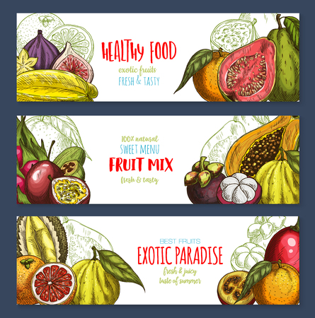 Vector banners of tropical exotic fruits harvest Ilustração