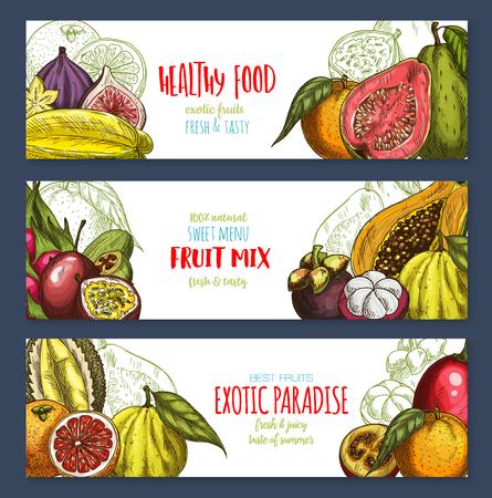 Vectorbanners van tropische exotische vruchtenoogst