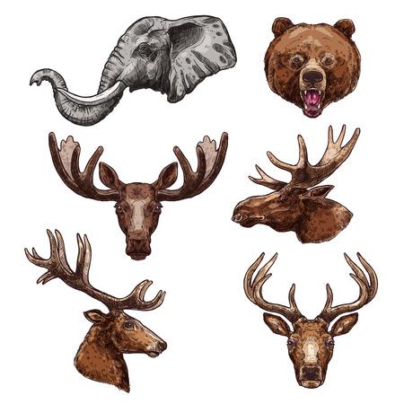 아프리카 동물 및 포유류 포유류 스케치 세트 일러스트