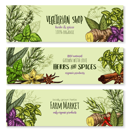 Herb, hot spice and condiment banners. Illustration