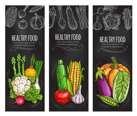 Vegetable chalkboard banner of fresh veggies 일러스트