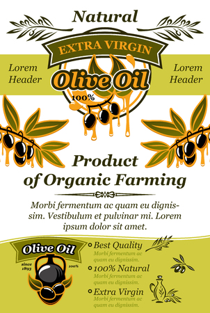 Olive oil banner of natural organic food design