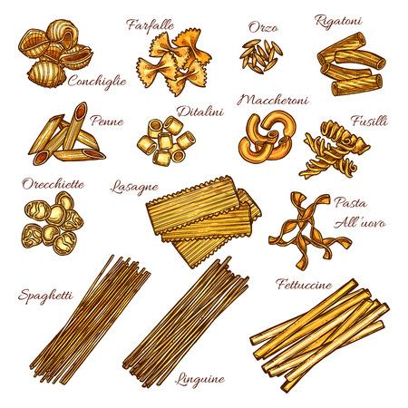 Pasta and spaghetti sketch set of italian macaroni