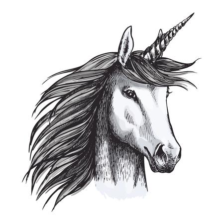 Unicorn mystic magic horse animal vector sketch