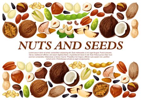 견과류와 과일 씨앗의 벡터 포스터입니다. 일러스트