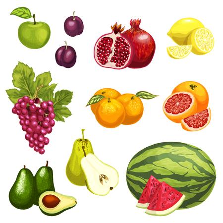 熱帯エキゾチックな果物のベクトルフラットアイコン  イラスト・ベクター素材