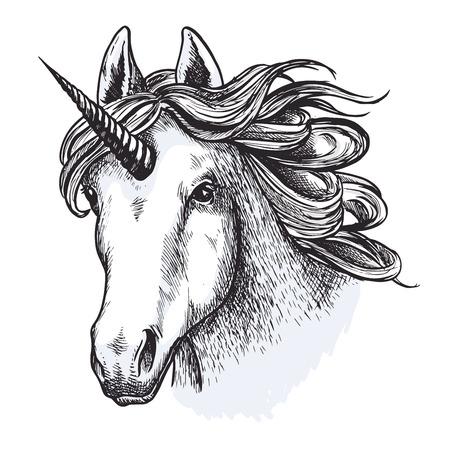 Unicorn horse mystic magic animal vector sketch Ilustrace