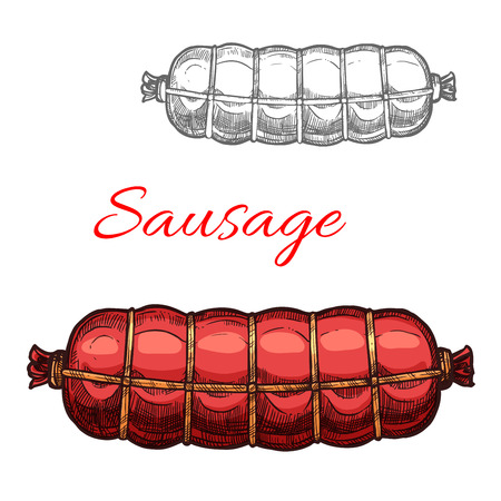 Vector sausage sketch meat icon Çizim