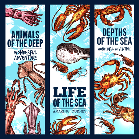 Seafood sketch banner set of deep sea fish and animal. Crab, lobster, shrimp or prawn, squid and fugu fish swimming in blue water for fishing sport trip, fish market and zoo aquarium flyer design Illustration