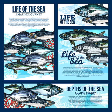 Zee leven sjabloon voor spandoek met diepwatervissen en oceaan dieren schets. Zalm, tonijn en makreel, karper, baars en meer voor zeevruchtenmenu of visreisontwerp.