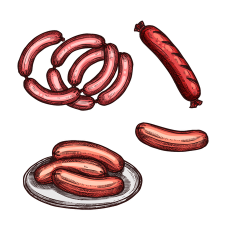 접시에 고기 소시지 스케치. 정육점과 바베큐 메뉴 디자인을위한 고기 제품의 신선한 쇠고기와 돼지 고기 소시지, 구운 frankfurter와 weenie 고립 된 아이