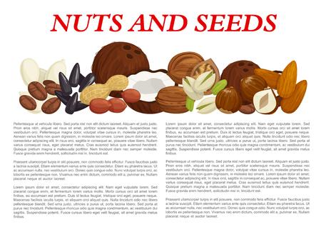 Noten en fruit zaden of kernels informatie poster sjabloon over voedingsfeiten. Vector ontwerp van amandel, hazelaar of pinda en walnoot, pistache of pompoen en zonnebloempitten, kokosnoot of hazelnootnoot