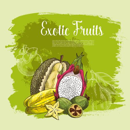 Vers exotisch fruit poster voor fruit winkel. Vectoroogst van tropische durian, carambolastervrucht of feijoa en sappige dragon fruit pithaya, mangostan of rambutan en citrus grapefruit of pomelo. Stock Illustratie