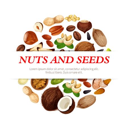 Nüsse und Fruchtsamen oder Bohnenplakat. Vector Erdnuss-, Haselnuss- oder Walnuss- und Pistazienkerne, Mandel- oder Hülsenfruchtbohnenhülse und Kürbis- oder Sonnenblumensamen, Kokosnuss- und Macadamia- oder Haselnussnuss Standard-Bild - 92746748