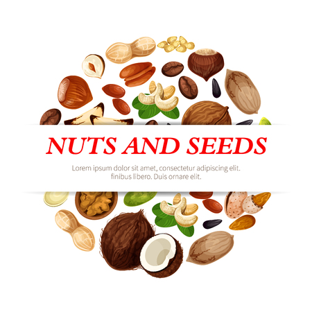 Nuts and fruit seeds or beans poster. Vector peanut, hazelnut or walnut and pistachio kernels, almond nut or legume bean pod and pumpkin or sunflower seeds, coconut and macadamia or filbert nut