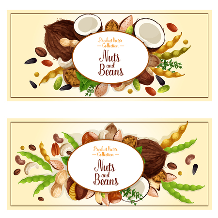 Nuts and fruit seeds or beans banners. Vector set of walnut, peanut or coconut and hazelnut, pistachio or almond nut legume bean pod, pumpkin or sunflower seeds and macadamia or filbert nut Illustration