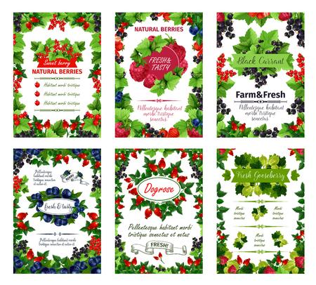 정원 붉은 건포도, 개 장미 열매 또는 까치밥 나무 및 나무 딸기, 유기 숲 크랜베리 또는 버찌 및 들쭉의 신선한 자연적인 장과 포스터. 농장 시장 또는