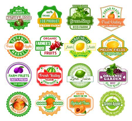 Cones e etiquetas dos frutos para o suco de fruto ou os produtos do mercado do fazendeiro. Emblemas de vetor definido para kiwi orgânico, pêra ou uva e pêssego, maçã natural ou granada e limão fresco ou melão, ameixa ou melancia Foto de archivo - 92757970