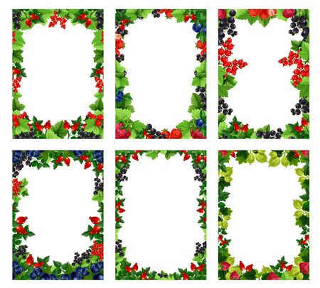 베리 포스터 템플릿 조리법 또는 메뉴 및 농장 시장 템플릿. 벡터 신선한 자연 딸기, 정원 라스베리 또는 붉은 건포도와 체리 과일, 포크 블랙 베리 또 일러스트
