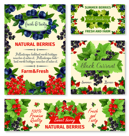 Berry summer fruit banner template set. Blueberry, red currant, blackcurrant, gooseberry and briar vector poster. Garden and wild berry with green leaf frame and badge with ribbon banner, food design Çizim