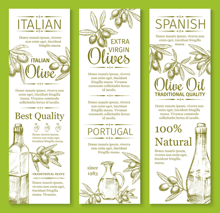 Olive oil sketch banners of green and black olives for extra virgin product bottle packing label design template. Best quality organic vector Portugal ot Italy and Spain cooking oil. Stock Illustratie