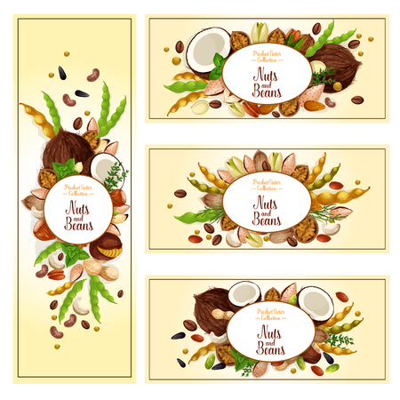 Nuts, bean and seed super food label set. Almond, peanut, walnut, pistachio, hazelnut, pecan, cashew, soy, coffee bean, sunflower and pumpkin seed, macadamia and Brazil nut vector badge for food design.