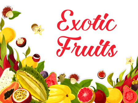 Exotic tropical fruits poster of guava, figs or orange and lichee, carambola starfruit or maracuya passion fruit. Vector tropic fruit harvest of and papaya and dragon fruit for market shop