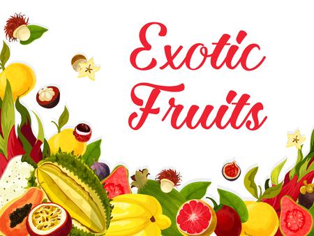Exotisches tropisches Fruchtplakat der Guave, der Feigen oder der Orange und der Litschi, des Carambola starfruit oder der Maracuya-Maracuja. Vector tropische Fruchternte von und Papaya- und Drachefrucht für Marktshop Standard-Bild - 93367154